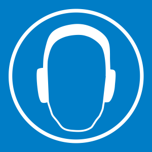 Hearing_BL